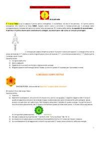Medicine Alternative i chakra