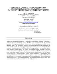 Synergy and Self-Organization in the Evolution of Complex Systems
