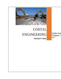 coastal engeneering (ingenieria costera)