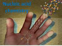 Nucleic acid chemistry for Medical Sciences